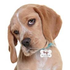 Medalion Câine formă OS