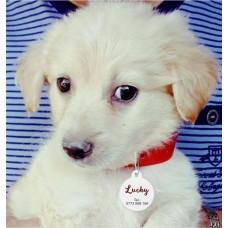 Medalion Câine formă Rotundă