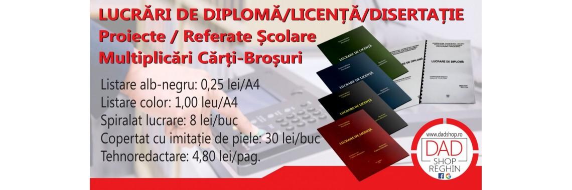 Lucrări Diplomă/Licență